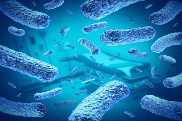 Bacteria in Hospital Setting